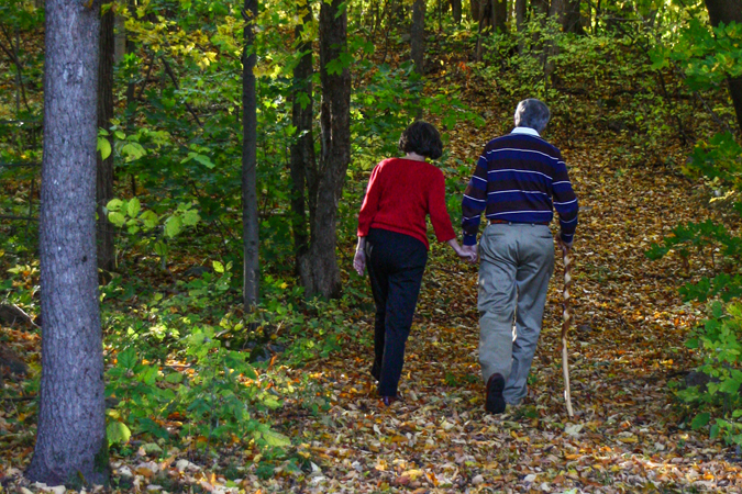 An older couple walking hand-in-hand along a trail surrounded by hardwood trees